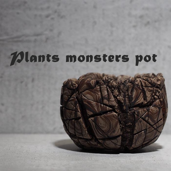 Plants monsters pot